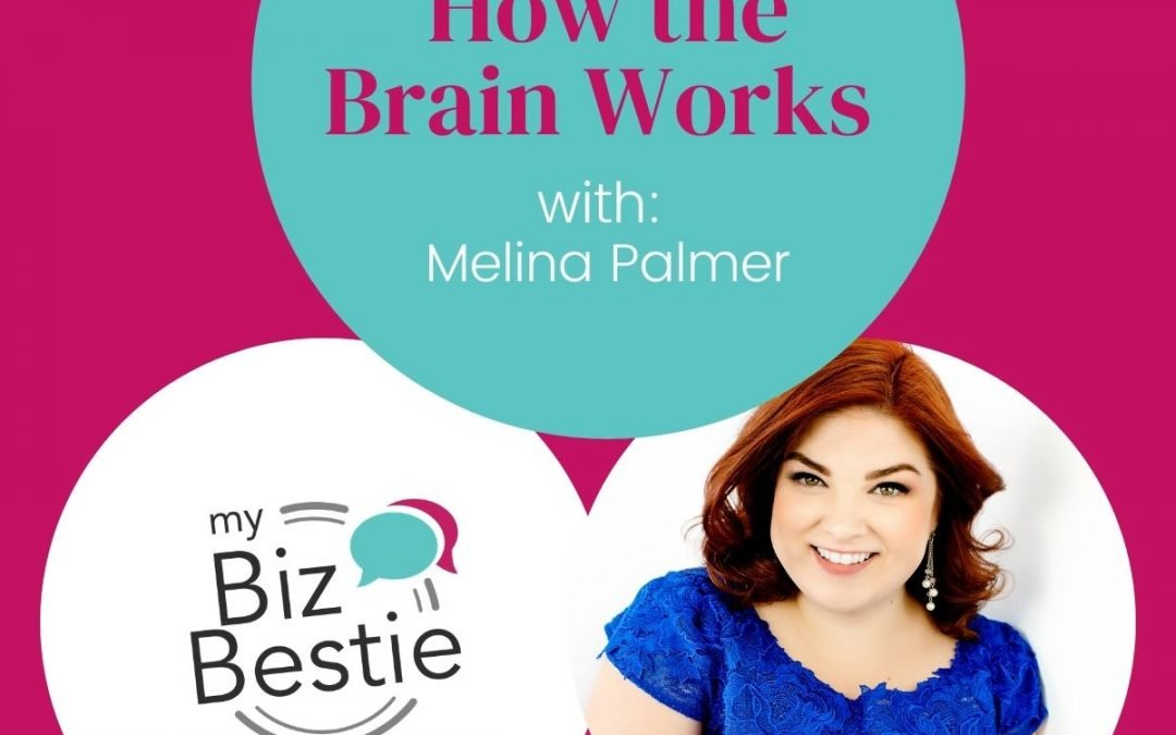 How The Brain Works With Melina Palmer